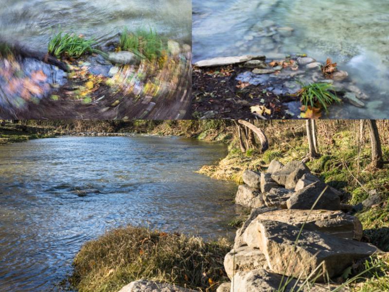 collage rius 2